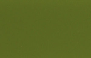 BL 22G Оливковый