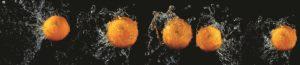 FM 042 Апельсины на черном