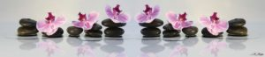 SP 035 Орхидеи на черных камнях