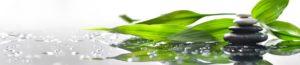 SP 066 Галька - трава на воде