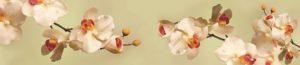 SP 102 Веточки орхидеи