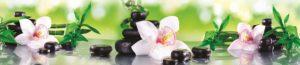 SP 109 Орхидеи на зеленом