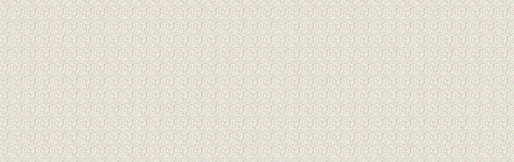 8004/S Latte